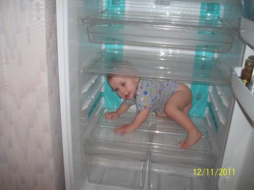 Малыш осваивает холодильник