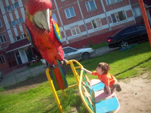 Знакомится с большой птицей