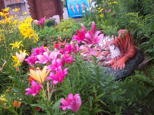 Тигр в цветах
