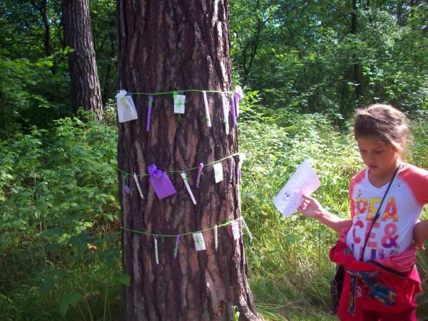 Призы на дереве