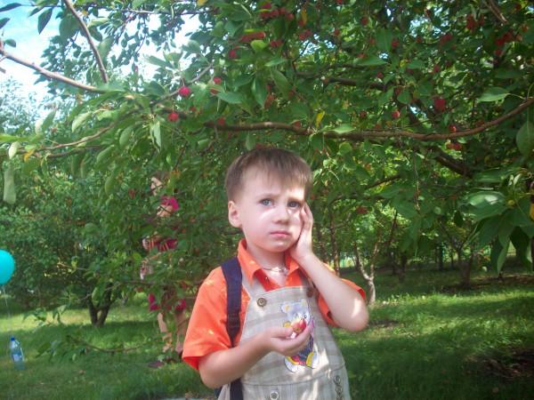 Егорка в яблоневом саду