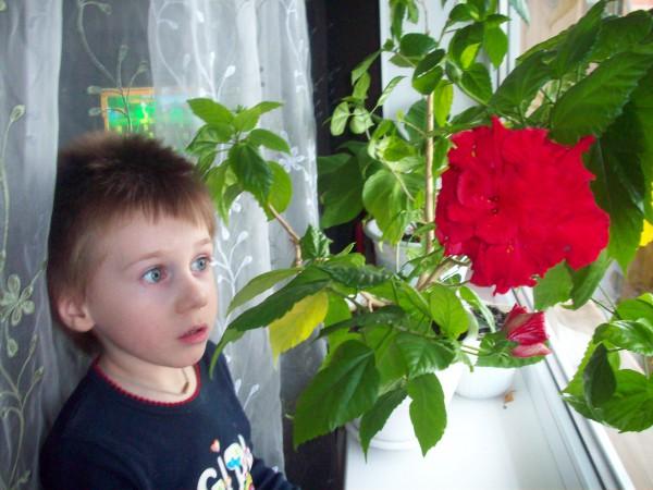 egorka x mail ru на сайте mail ru: