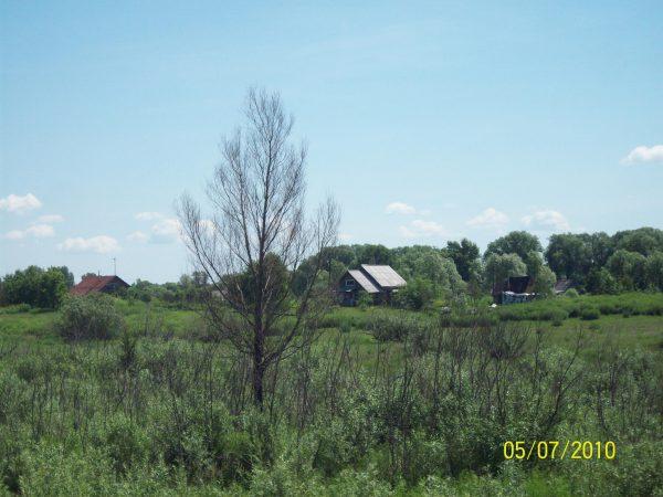Два дома вдалеке