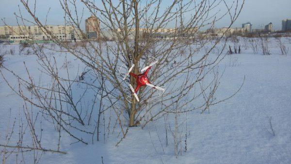 Квадрокоптер на дереве